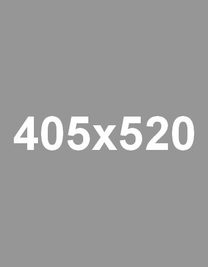 405х520