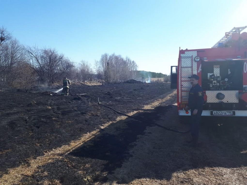20 апреля днем на площади в полторы тысячи квадратных метров горела трава в деревне Боровая. Возникла угроза загорания для близлежащих домов.