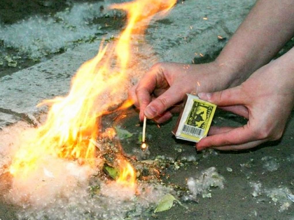 Поджечь тополиный пух – очень «увлекательная» забава?.. Так, 11 июня, в одиннадцатом часу вечера два отделения 163 ПСЧ
